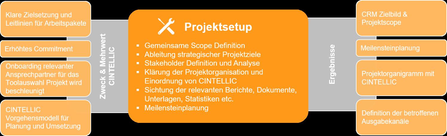CINTELLIC Projektsetup während der Business Analyse