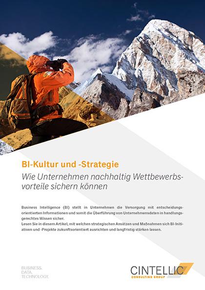 BI Kultur und Strategie Deckblatt