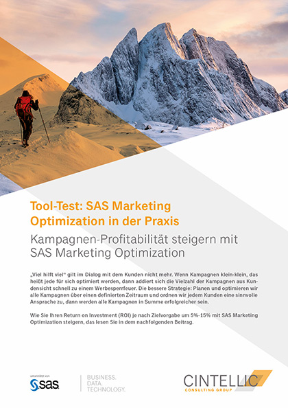 Whitepaper von Cintellic SAS Marketing Optimization