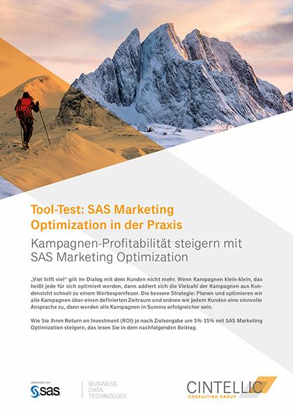 Whitepaper von Cintellic SAS Marketing Optimization